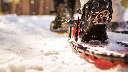 Homepage Activities Snow shoeing MINI Block