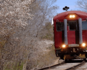 April Blog 21 - Train
