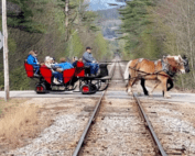 Wagon being pulled by horses